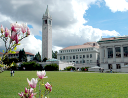 UCB's open door to visiting professorship is perfect timing Photo: Bonnie Azab Powell / UC Berkeley