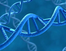 Mammalian DNAs contain large numbers of sequences that are derived from retroviral genomes. (Picture: norman blue / Fotolia.com)