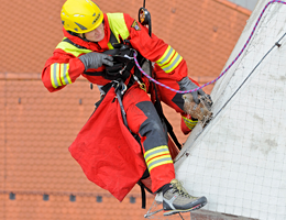 A flying visit (Source: Munich Fire Brigade)