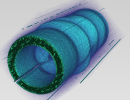 A three-dimensional depiction of the spatial variation of the optical electromagnetic field around a microantenna following excitation with terahertz pulse. The optical field is mapped with the aid of electron pulses. Illustration: Peter Baum