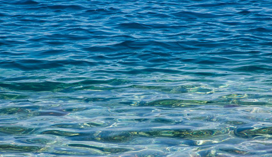 Sediments below the bottom of the Arabian Sea harbour microbiol communities that reflect the history of climate in this region. Picture: 500cx / fotolia.com