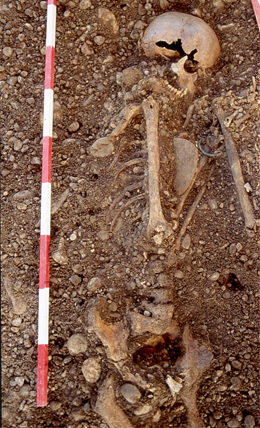 A male individual from the Haunstetten Postillionstraße site, with a dagger, flint arrow heads, bracelet and bone pin. (Stadtarchäologie Augsburg)
