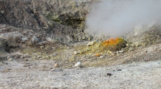 On the photo the largest fumarole (La Bocca Grande) in the Solfatara crater is shown, where the REE-dependent bacterium Methylacidiphilum fumariolicum SolV was first discovered. (Photo: Huub Op den Camp)