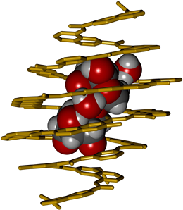 A foldamer receptor designed from first principles selectively binds to, and completely encapsulates a disaccharide. (© Ivan Huc)